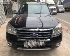 Bán Ford Everest Limited sản xuất năm 2010, màu đen   giá 450 triệu tại Hải Dương