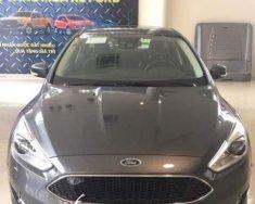 Cần bán xe Ford Focus năm sản xuất 2019, màu xám, giá 565tr giá 565 triệu tại Tp.HCM