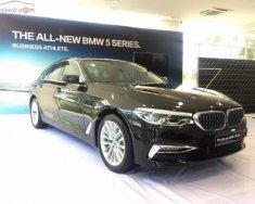 Bán ô tô BMW 5 Series 530i năm 2019, màu đen, xe nhập giá 3 tỷ 69 tr tại Tp.HCM