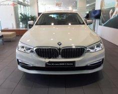 Cần bán xe BMW 5 Series 530i đời 2019, màu trắng, nhập khẩu nguyên chiếc giá 3 tỷ 69 tr tại Tp.HCM