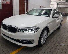 Bán BMW 5 Series 530i sản xuất năm 2019, màu trắng, xe nhập giá 3 tỷ 69 tr tại Tp.HCM