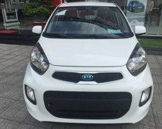Bán Kia Morning EX MT - Giá cực tốt - chiếc xe phù hợp với người mới lái xe và chạy Grab giá 295 triệu tại Hà Nội