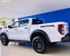 Bán xe Ford Ranger Raptor 2.0L 4x4 AT năm 2018, màu trắng  giá 1 tỷ 198 tr tại Tp.HCM