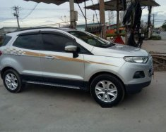Bán Ford EcoSport đời 2017, màu bạc, xe nhập giá 490 triệu tại Đồng Nai