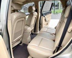 Bán Chevrolet Captiva MAXX LTZ đời 2010, màu vàng cát giá 39 triệu tại Tp.HCM