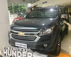 Bán xe Chevrolet Colorado sản xuất 2018, màu xanh lam, nhập khẩu Thái Lan, 594 triệu giá 594 triệu tại Tp.HCM