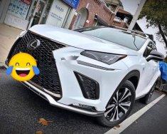 Bán Lexus NX 300H năm sản xuất 2018, màu trắng, nhập khẩu giá 2 tỷ 450 tr tại Bình Dương