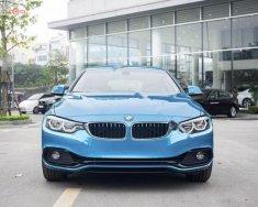 Bán BMW 420i Gran Coupe 2019 màu xanh mới lần đầu tiên xuất hiện giá 2 tỷ 89 tr tại Nghệ An