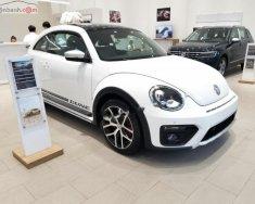 Bán Volkswagen Beetle Dune màu trắng, nhập khẩu nguyên chiếc từ châu Âu giá 1 tỷ 499 tr tại Tp.HCM