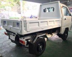 Suzuki Truck Ben màu trắng giá tốt giá 281 triệu tại Bình Dương