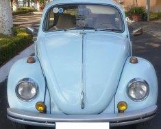 Bán xe Volkswagen Beetle (con bọ cổ) đời 1500, sản xuất năm 1968 giá 250 triệu tại An Giang