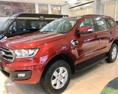 Bán Ford Everest Ambien MT sản xuất 2019, màu đỏ, nhập khẩu giá 990 triệu tại Hà Nội
