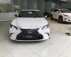 Bán ô tô Lexus ES 250 đời 2019, màu trắng, nhập khẩu giá 2 tỷ 499 tr tại Tp.HCM