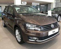 Bán Volkswagen Polo 2017, màu nâu, nhập khẩu chính hãng, giá tốt giá 679 triệu tại Tp.HCM