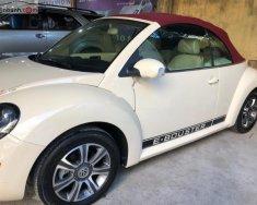 Cần bán Volkswagen New Beetle 2.5 AT đời 2007, màu kem (be), nhập khẩu giá cạnh tranh giá 520 triệu tại Tp.HCM