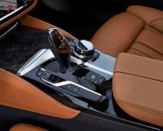 Bán BMW 5 Series 530i năm sản xuất 2019, nhập nguyên chiếc từ Đức và có sẵn để giao ngay giá 2 tỷ 389 tr tại Đà Nẵng
