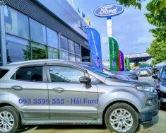 Bán Ford Eco Sport Titanium 1.5 AT 2015 màu xám (ghi) giá 495 triệu tại Tp.HCM
