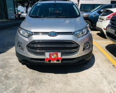Ford EcoSport Titanium 2015, SUV thành phố giá tốt giá 485 triệu tại Tp.HCM