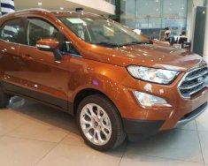 Bán Ford EcoSport siêu ưu đãi tặng BHVC, phim, camera, tiền mặt giá 590 triệu tại Tp.HCM