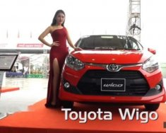 Bán Toyota Wigo sản xuất 2019, màu đỏ, xe nhập  giá 299 triệu tại Tp.HCM