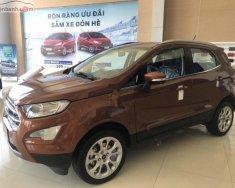 Bán ô tô Ford EcoSport Titanium 1.5L AT sản xuất năm 2019, màu nâu, 650tr giá 650 triệu tại Hà Nội