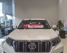 Bán Toyota Prado VX 2.7L 2019, màu trắng, nhập khẩu giá 2 tỷ 340 tr tại Hà Nội