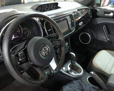 Cần bán Volkswagen Beetle Dune đời 2019, nhập khẩu giá 1 tỷ 469 tr tại Đà Nẵng