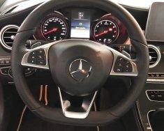 Cần bán Mercedes GLC 300 đời 2019, màu xanh lam, nhập khẩu nguyên chiếc giá 2 tỷ 949 tr tại Tp.HCM