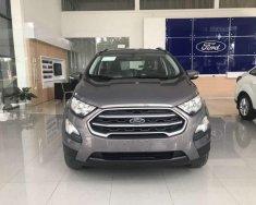 Bán xe Ford EcoSport năm sản xuất 2019 giá 535 triệu tại Quảng Ngãi