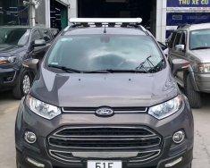 Bán Ford EcoSport Titanium 1.5 AT 2015, xe bán tại hãng Ford An Lạc giá 518 triệu tại Tp.HCM
