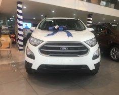 Bán xe Ford Ecosport 2019 - Mua xe tặng xe và hàng ngàn phần quà khác giá 490 triệu tại Tp.HCM