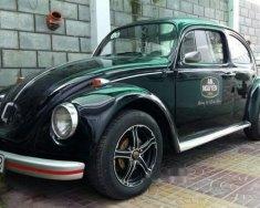 Bán Volkswagen Beetle năm sản xuất 1980, nhập khẩu nguyên chiếc chính chủ giá 300 triệu tại An Giang