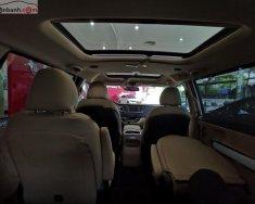 Bán Kia Sedona Platinum D năm sản xuất 2019 giá 1 tỷ 209 tr tại Tp.HCM
