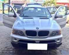 Cần tiền bán siêu phẩm BMW X5, sx2004 đk 2007, màu bạc, số tự động giá 365 triệu tại Tp.HCM