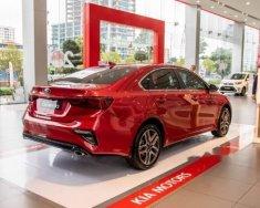 Cần bán Kia Cerato năm sản xuất 2019, màu đỏ giá 559 triệu tại Hà Nội