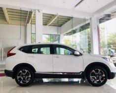 Bán ô tô Honda CR V đời 2019, màu trắng, xe nhập giá 1 tỷ 23 tr tại Đồng Nai