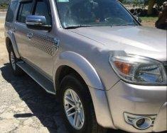 Bán gấp Ford Everest MT 2010, màu bạc, số sàn giá 469 triệu tại Bình Định