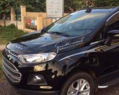 Bán Ford EcoSport sản xuất năm 2015, màu đen giá 442 triệu tại Bình Định