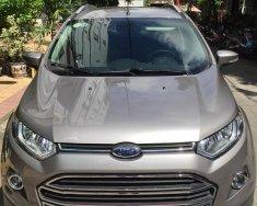 cần bán xe Ford Ecosport 2017, số tự động, titatium, màu xám giá 498 triệu tại Tp.HCM