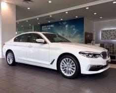 Bán BMW 5 Series 530i đời 2019, màu trắng, xe nhập giá 2 tỷ 991 tr tại Tp.HCM