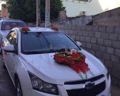 Bán Chevrolet Cruze LS năm 2010, màu trắng, xe rất đẹp và êm giá 290 triệu tại Ninh Thuận
