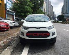 Cần bán Ford EcoSport Titanium 1.5 AT năm sản xuất 2015, màu trắng giá 495 triệu tại Hà Nội