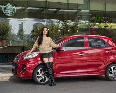 Cần bán Kia Morning 2019, màu đỏ, nhập khẩu nguyên chiếc giá 299 triệu tại Vĩnh Long