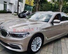 Bán BMW 5 Series 530i đời 2019, màu nâu giá 3 tỷ 40 tr tại Tp.HCM