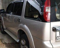 Bán xe Ford Everest sản xuất năm 2013, màu bạc  giá 530 triệu tại Đồng Nai