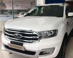 Bán xe Ford Everest 2019, màu trắng, nhập khẩu giá 1 tỷ 177 tr tại Tp.HCM