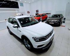 Bán Volkswagen Tiguan Allspace 2019, màu trắng giá 1 tỷ 729 tr tại Hà Nội