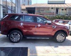 Bán Ford Everest sản xuất 2019, màu đỏ, nhập khẩu giá 1 tỷ 177 tr tại Tp.HCM