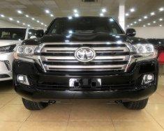 Bán Toyota Land Cruiser 5.7 đời 2020, màu đen, nhập khẩu nguyên chiếc giá 7 tỷ 890 tr tại Hà Nội