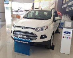 Bán Ford EcoSport Trend 1.5L AT 2019 đủ màu giao ngay. Hỗ trợ vay tới 80% giá 553 triệu tại Hà Nội